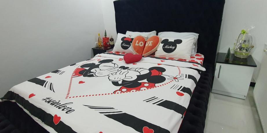 2990 din za noćenje za dve osobe u apartmanu Maca na Petrovaradinu!
