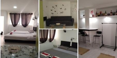 4400 din za dva noćenja za dve osobe u apartmanu -35 m2 (besplatan WI-FI, kuhinja,kupatilo,video nadzor,parking)-Apartmani Divlji Raj u Beogradu!