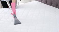 2500 din za dubinsko obostrano čišćenje i dezinfekciju kreveta/madraca (jednog singl ili jednog bračnog)!