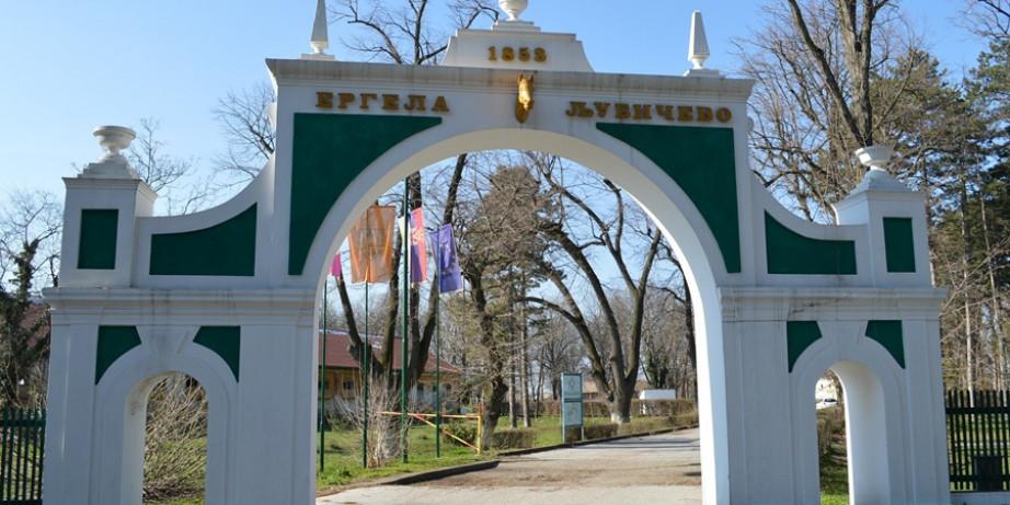 1150 din za jednodnevni izlet Vrelo Mlave - ergela  Ljubičevo - Trška crkva - manastir Gornjak!